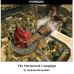 The Stormreach Campaign